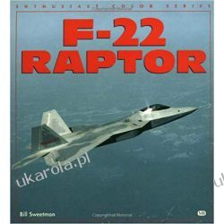 F-22 Raptor Lotnictwo