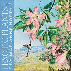 Kew Gardens - Exotic Plants by Marianne North Wall Calendar 2021 Kalendarze ścienne