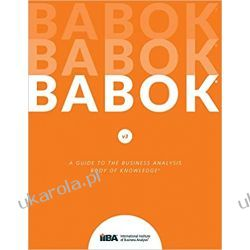 A Guide to the Business Analysis Body of Knowledge® (BABOK® Guide): 3 Pozostałe