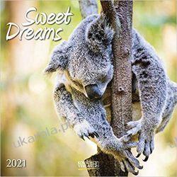 Kalendarz Sweet Dreams 2021 Calendar