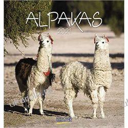 Mini Kalendarz Alpaki Alpakas 2021 Alpacas Calendar