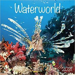 Kalendarz Wodny Świat Waterworld 2021 Calendar Zagraniczne