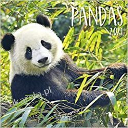 Kalendarz Pandy Pandas 2021 Calendar Kalendarze ścienne