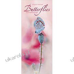 Kalendarz Motyle Butterflies 2021 Calendar Książki i Komiksy
