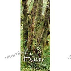 Kalendarz Drzewa Lasy Trees 2021 Calendar  Kalendarze ścienne
