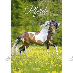 Kalendarz Konie Horses 2021 Calendar Książki i Komiksy
