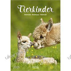 Kalendarz Dzieci Zwierząt Animal children 2021 Calendar Książki i Komiksy