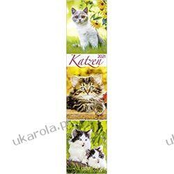 Kalendarz Koty Cats Planner 2021 Calendar Książki i Komiksy