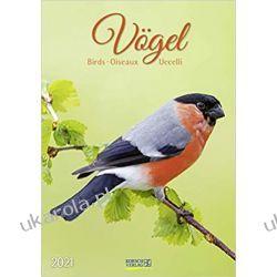 Kalendarz Ptaki Birds 2021 Calendar Książki i Komiksy