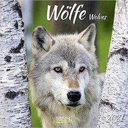 Kalendarz Wilki Wolves 2021 Calendar