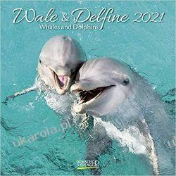 Kalendarz Delfiny i wieloryby Whales and Dolphins 2021 Calendar Książki i Komiksy