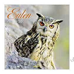 Kalendarz Sowy Owls 2021 Calendar Książki i Komiksy