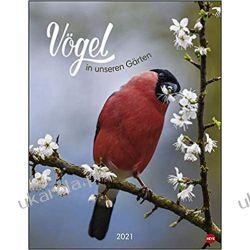 Kalendarz Ptaki w ogrodach Birds in our gardens Poster Calendar 2021 Książki i Komiksy