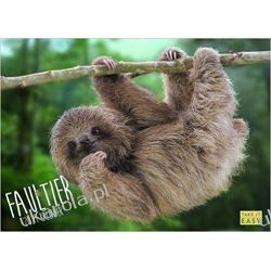 Hangin' with Sloths 2021 Wall Calendar leniwce Broń palna