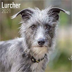 Lurcher 2021 Calendar
