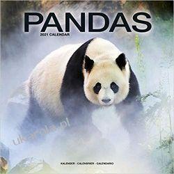 Kalendarz z pandami Pandas 2021 Calendar Książki i Komiksy