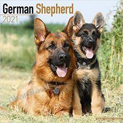 Kalendarz Owczarek Niemiecki German Shepherd 2021 Calendar