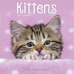 Kalendarz Koty Kittens 2021 Calendar Kalendarze książkowe
