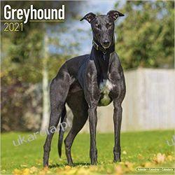 Greyhound 2021 Calendar charty Historyczne