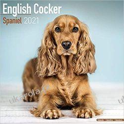 Kalendarz English Cocker Spaniel 2021 Calendar II wojna światowa