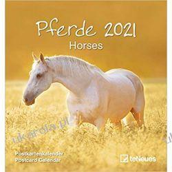 Kalendarz Konie 2021 Horses Postcard Calendar Zagraniczne