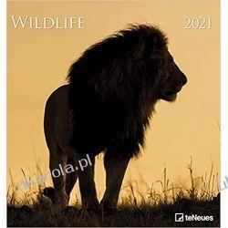 Kalendarz Wildlife 2021 Photo Calendar Pozostałe