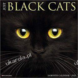 Kalendarz Czarne Koty Just Black Cats 2021 Calendar Książki i Komiksy