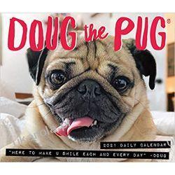 Kalendarz biurkowy Mopsy Doug the Pug 2021 Box Calendar Pozostałe