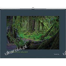 Kalendarz Magische Wälder 2021 magiczny las  Książki i Komiksy