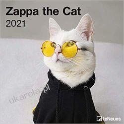 Kalendarz Kot Zappa the Cat 2021 Square Wall Calendar Książki i Komiksy