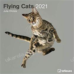 Kalendarz Latające Koty Flying Cats 2021 Square Wall Calendar Książki i Komiksy