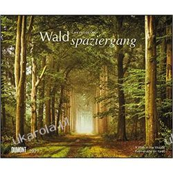 Waldspaziergang 2021 - Fotokunst-Kalender - Querformat 58,4 x 48,5 cm lasy forest Książki i Komiksy