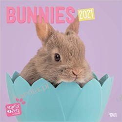 Rabbits 2021 Square Wall Calendar (Studio Pets) Książki i Komiksy