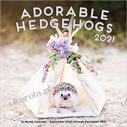 Kalendarz Jeże Adorable Hedgehogs 2021 Calendar Kalendarze ścienne