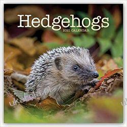 Kalendarz z jeżami Jeże Hedgehogs - Igel 2021 Calendar Kalendarze ścienne