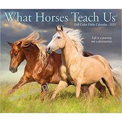 Kalendarz biurkowy Konie What Horses Teach Us 2021 Box Calendar Pozostałe