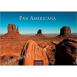 Kalendarz Pan Americana 2021 L 50x35cm Książki i Komiksy