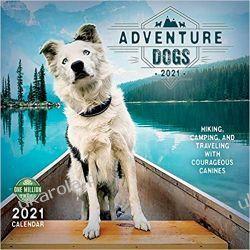 Kalendarz Psy ahoj przygodo Adventure Dogs 2021 Calendar Kalendarze ścienne