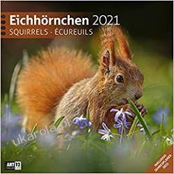 Eichhörnchen 2021 wiewiórki Kalendarze ścienne