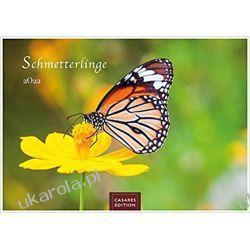 Motyle 2022 L 35x50cm Kalendarz Butterflies Calendar
