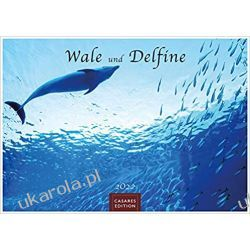 Kalendarz Wieloryby i delfiny Whales and dolphins 2022 Calendar