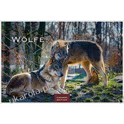 Wolves Calendar Wilki 2022 L 35x50cm Kalendarz