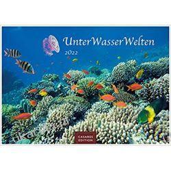 Kalendarz Podwodny Świat Underwater World 2022 Calendar L 35x50cm