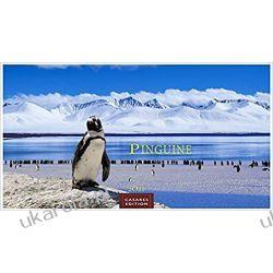 Kalendarz Pingwiny Penguins 2022 L 35x50cm Calendar Broń pancerna