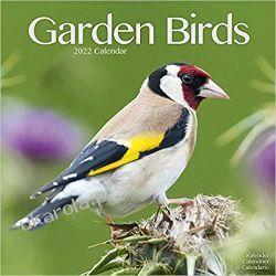 Kalendarz z ptakami Ptaki Garden Birds Calendar 2022 Książki i Komiksy