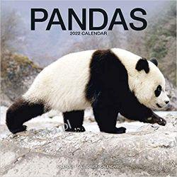 Kalendarz Pandy Pandas Calendar 2022 Książki i Komiksy