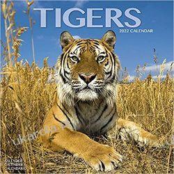 Kalendarz Tygrysy Tigers 2022 Calendar Książki i Komiksy