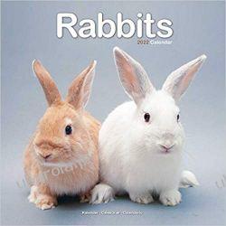 Kalendarz Króliki Rabbits Calendar 2022 Kalendarze ścienne