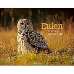 Kalendarz sowy Eulen Kalender 2022 owls calendar