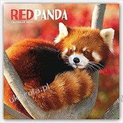 Kalendarz Red Panda 2022 Panda Mała Calendar